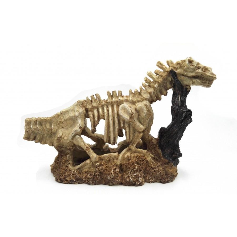 Aqua-Fit Aqua-Fit Brontosaurus Skeleton