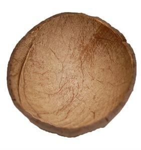 ZooMax ZooMax Coconut Shell half