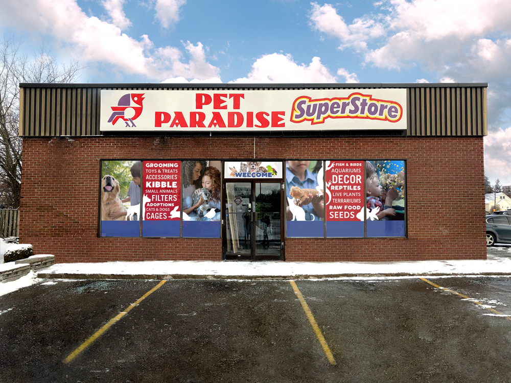 pet paradise store image