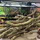 Cork Branches 9.99/lb