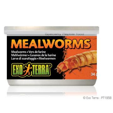 Exo Terra Exo Terra Canned Mealworms 1.2 oz
