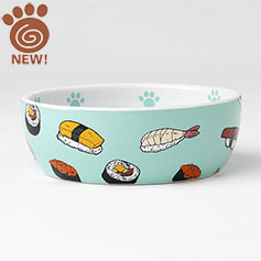 """PetRageous Petrageouse Sushi time Cat Dish Teal 5"""" 2 Cups"""