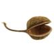 Newcal Pet NewCal Buddha Nut XL