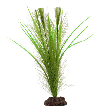 Aqualife Fluval Aqualife Plant Scapes Green Parrot's Feather/ Vallisneria Plant Mix - 30.5 cm (12 in)