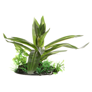 Fluval Fluval Giant Sagittaria - Small - 10 cm (4in) with base