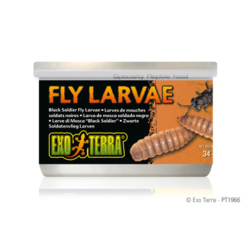 Exo Terra Exo Terra Canned Black Soldier Fly Larvae 1.2 oz