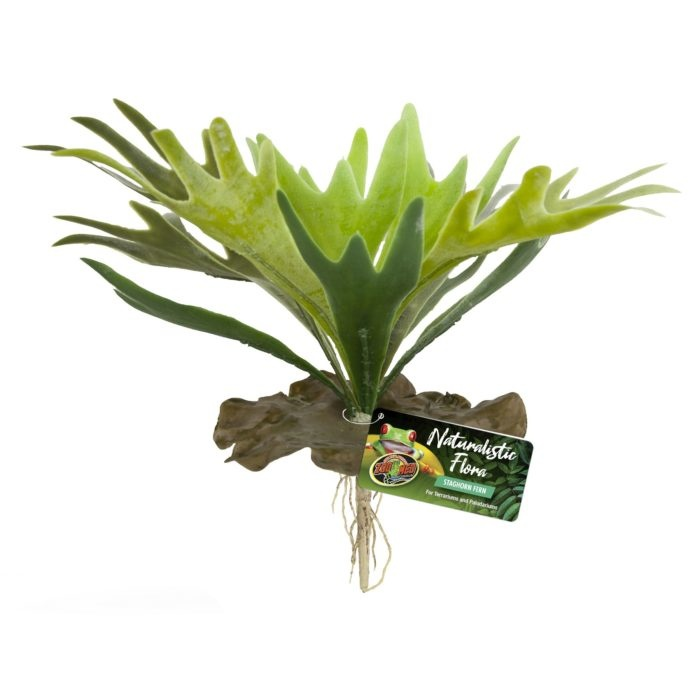 Zoo Med Laboratories Zoo Med Naturalistic Flora Staghorn Fern