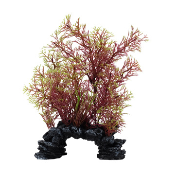 Aqualife Fluval Aqualife Deco Scapes Red/Green Foxtail Mix - 15-20 cm (6-8 in)