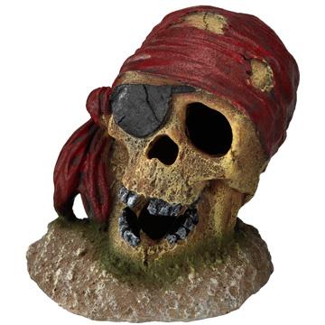 Aqua Della Aqua Della - Pirate Skull with Eye Patch