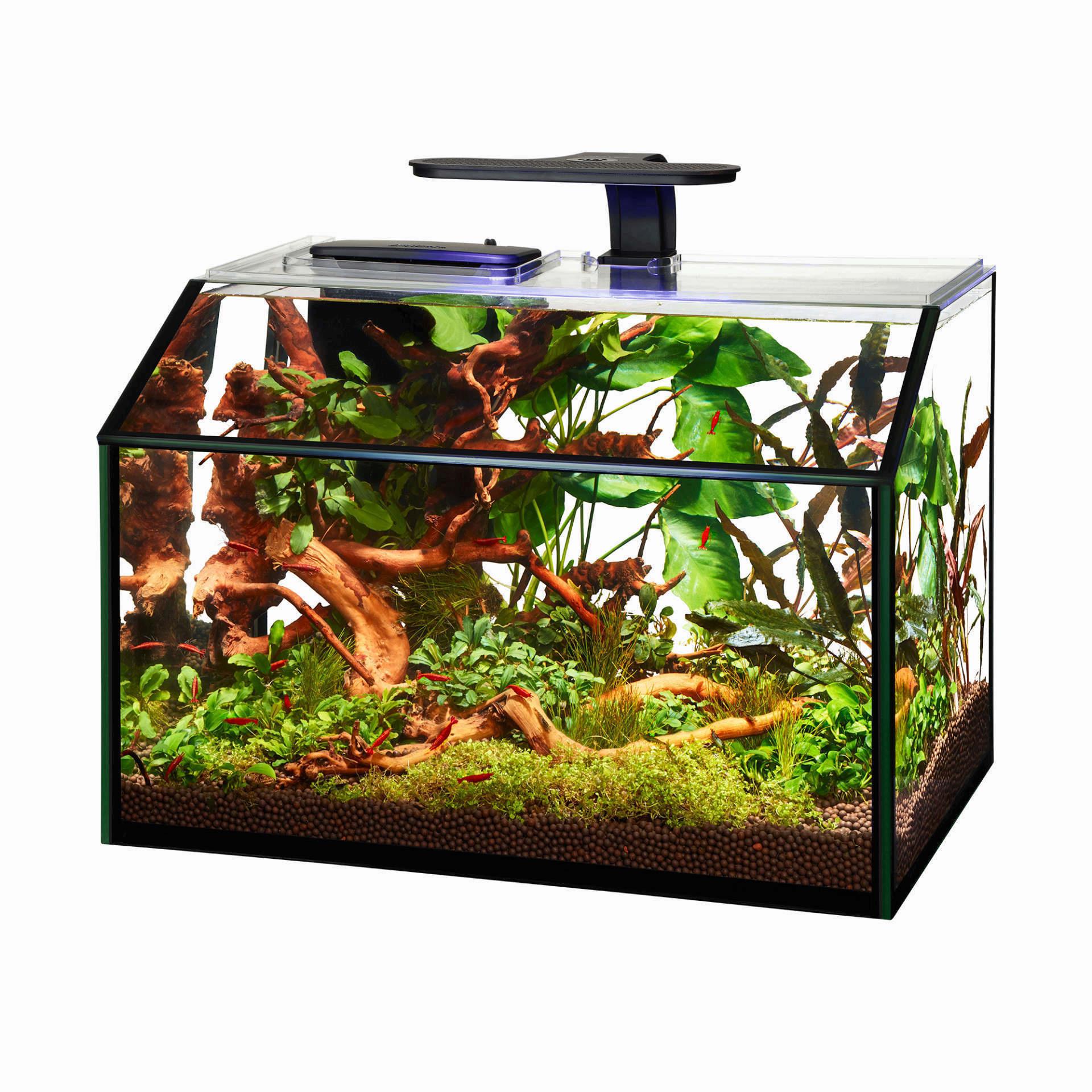 Aqueon Aqueon Designer LED Shrimp Aquarium Kit 8.75 Gal