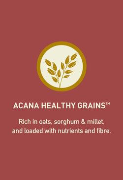 Acana Acana Healthy Grains Large Breed Formula 10.2kg