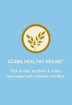 Acana Acana Healthy Grains Puppy Recipe