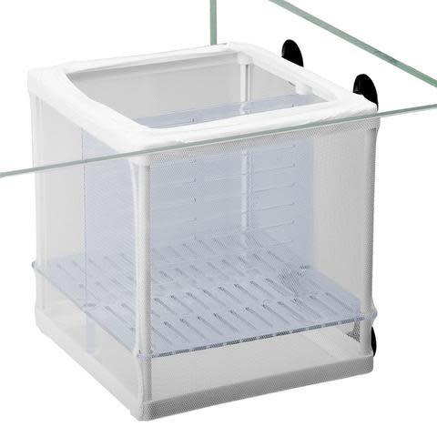 """Aquatop AQUATOP Aquarium Nursery Box 5.5""""x6""""x6"""""""