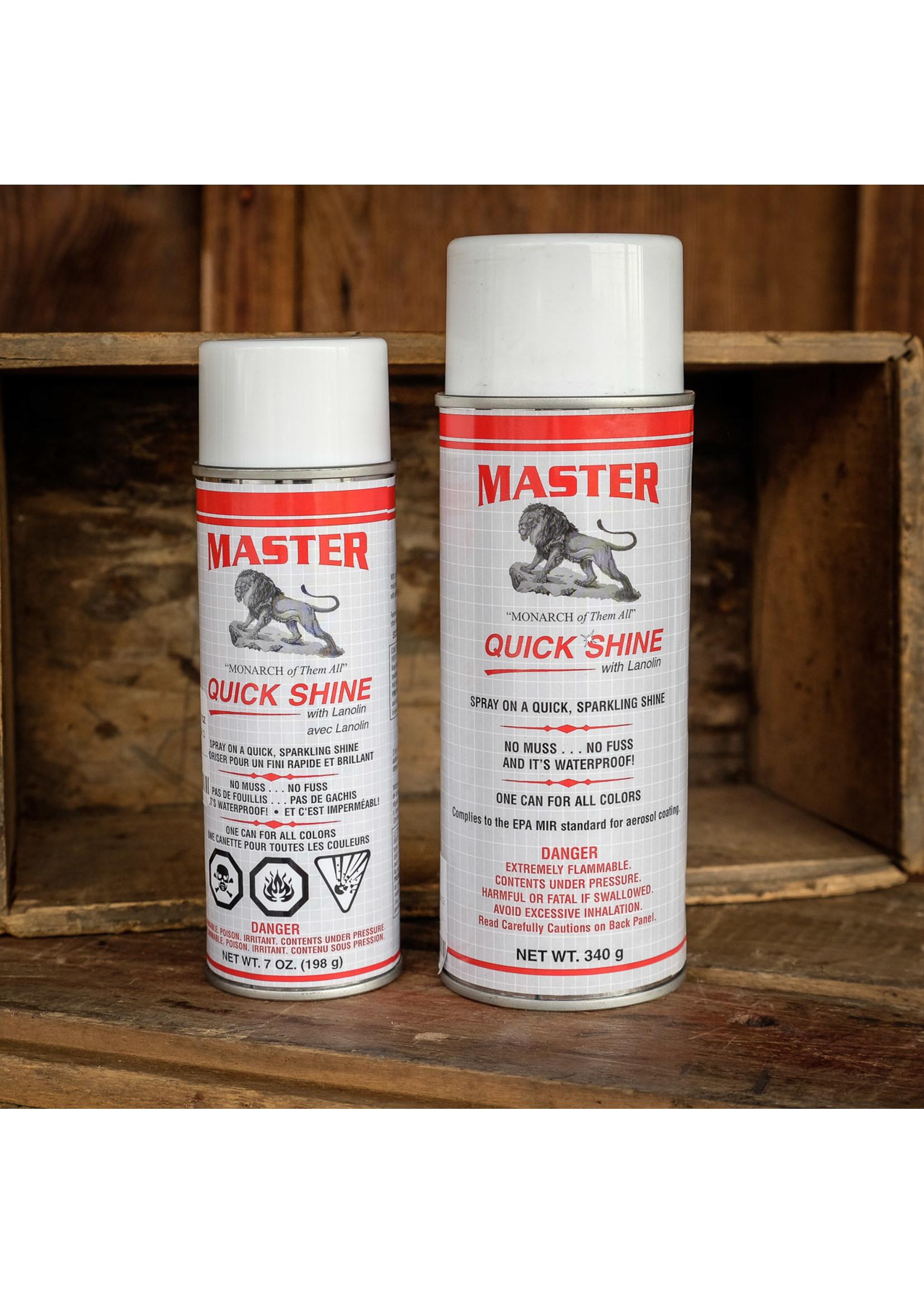Master Quick Shine Spray