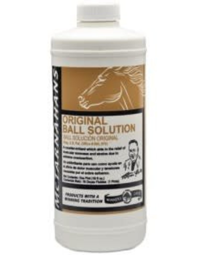 BALL SOLUTION 16 FL OZ