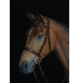 BRIDLE COLLEGIATE COMFORT PADDED