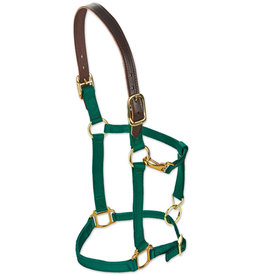 HALTER ADJUSTABLE HAMILTON