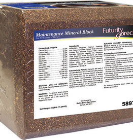 MAINTENANCE MINERAL BLOCK