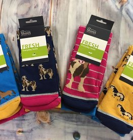 SHIRES Shires Everyday Socks Adult