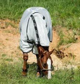 Amigo Amigo Stock Horse Flysheet