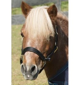 SHIRES Topaz Mini Halter Nylon