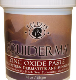 Equiderma Zinc Oxide Paste 16oz
