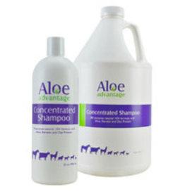 Aloe Advantage Concentrated Shampoo 32OZ