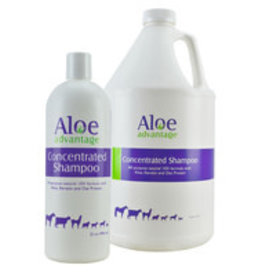 ALOE ADVANTAGE SHAMPOO 32OZ