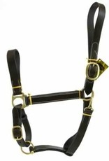 Stable Halter Gaysby W/Snap Yearling