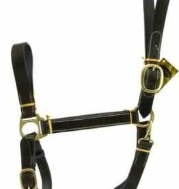 Stable Halter W/Snap Gatsby Horse
