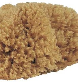 Small Natural Tack Sponge 4""