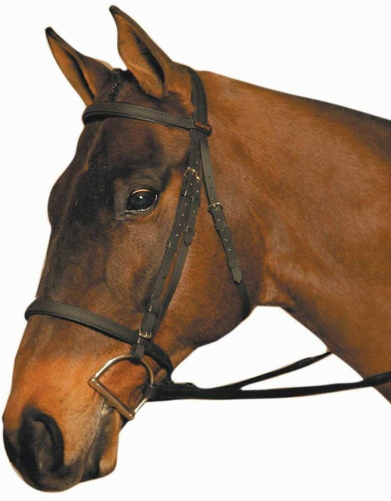 Wintec Bridle No Flash