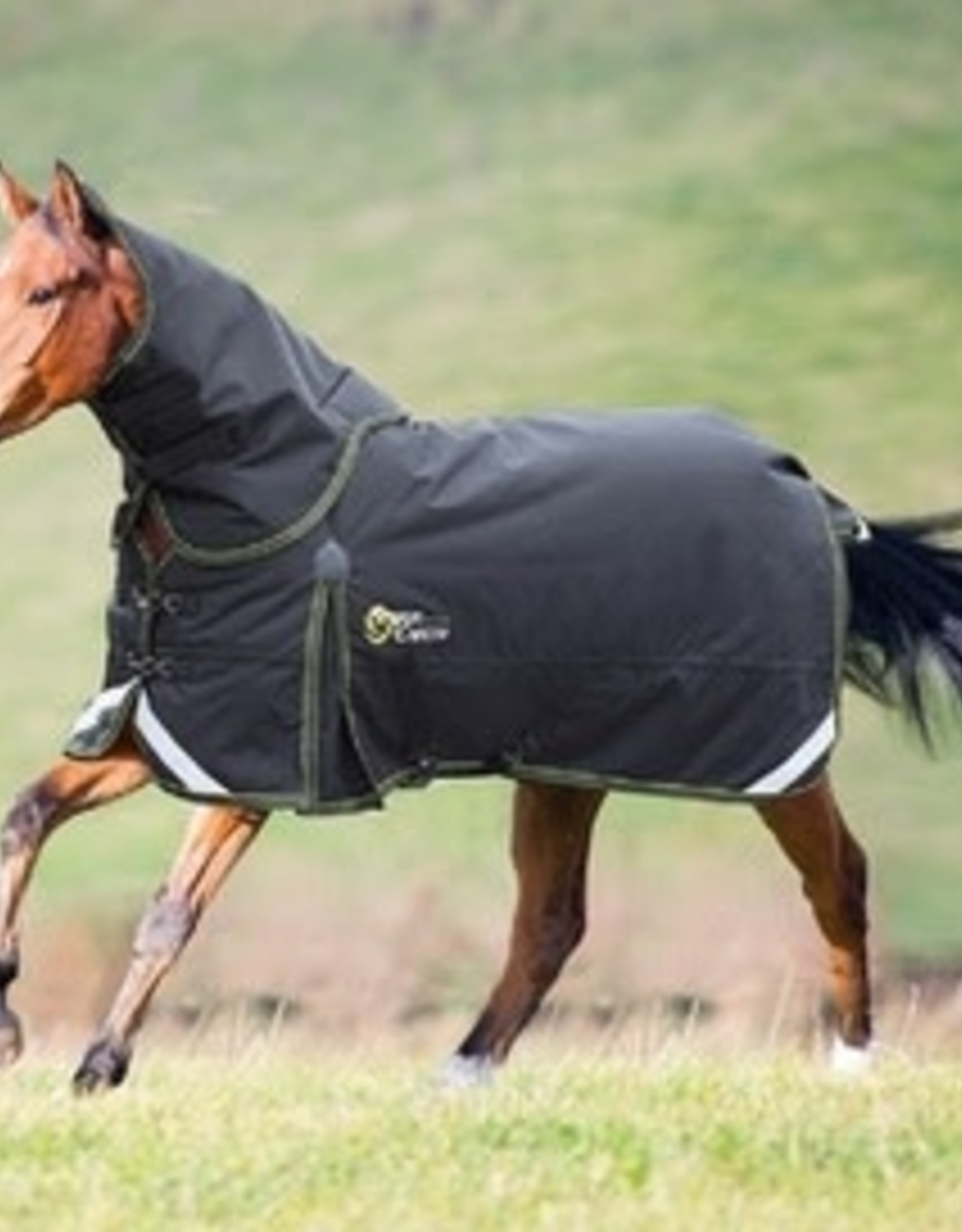 StormCheeta 300 Turnout Rug & Neck Set