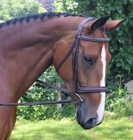 BLACK OAK Hunter Bridle Laurel Black Oak