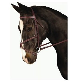 Kincade Padded Figure 8 Bridle Full Brown