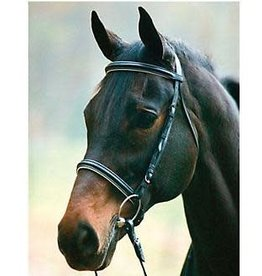 Henri de Rivel Padded Bridle