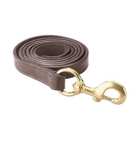 Perri's Leather Lead with Brass Snap