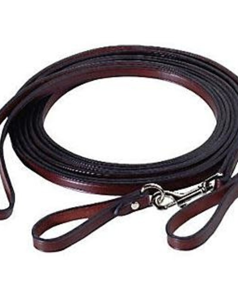 Draw Reins Leather W/snaps