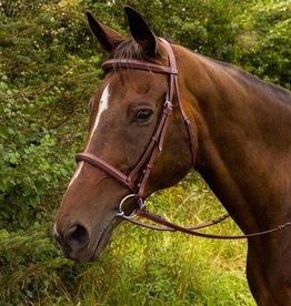 HDR FANCY RAISED PADDED BRIDLE W/ LACED REINS