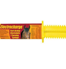 Electrolyte Finish Line Electrocharge