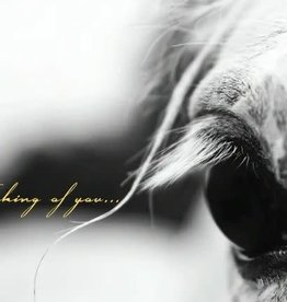 Sympathy Card: Thinking of you gray horse