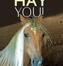 Birthday Card - Hay You