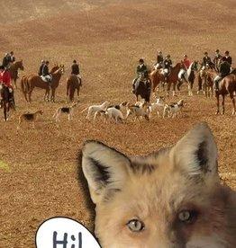 Card Fox Hunter Hi Birthday