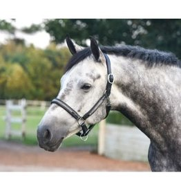 Perri's Halter Perries Silver Bling Padded