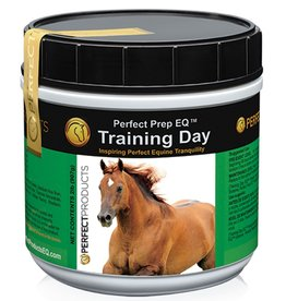 TRAINING DAY PEFRECT PREP EQ 2