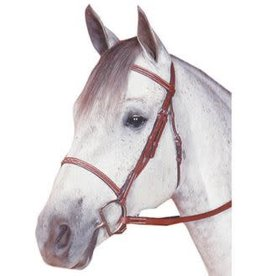 Raised Fancy Stitched Bridle
