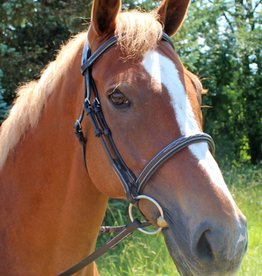 Bridle HDR Mono Crown Fancy Stitched Padded