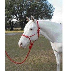 Horse Rope Halter W/Lead