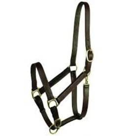 Stable Halter w/ snap Large