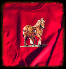 Kids Sweatshirt with 2 horse design